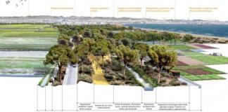 Proyecto de transformación de la autovía de El Saler en un bulevar verde con un carril de circulación.