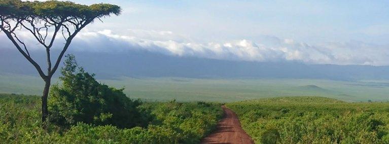 Descending the Ngorongoro Crater