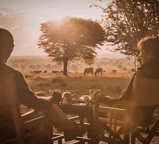 7-Days-Classic-Tanzania-Migration-&-Lodge-Stay.