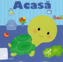 Acasa_988362 web