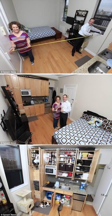 Most Amazing Tiny Homes