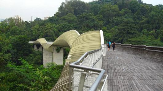 Henderson Waves Bridge In Singapore