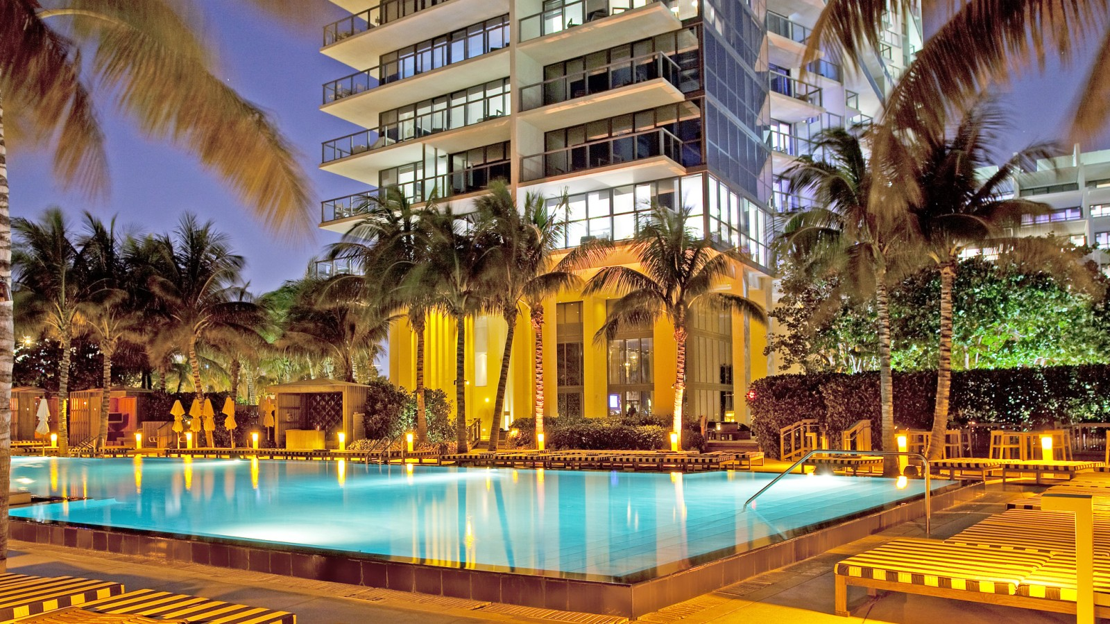 Petfriendly Hotels Miami  W South Beach