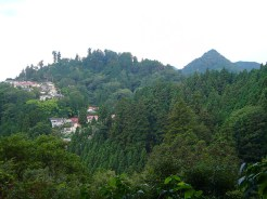 Mountain-View-and-Mitake-Village
