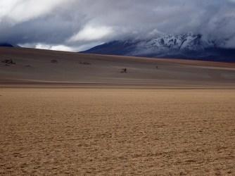 Salvador Dali desert landscape