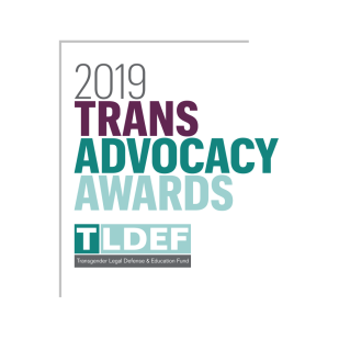 Trans Advocacy Awards Branding