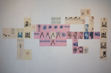 collage-pared