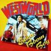 Westworld- Sonic Boom Boy (1987)
