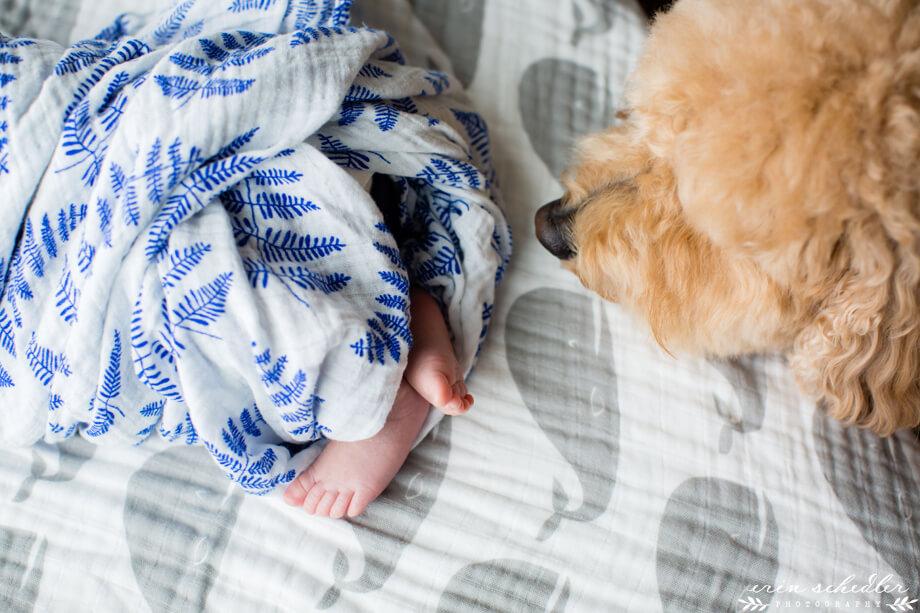 seattle_lifestyle_newborn_photography007