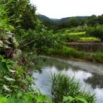 徳島県神山町温泉