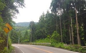 高知県・県道32号線