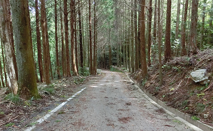 天岩戸立岩神社(あまのいわとたていわじんじゃ)
