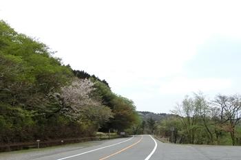 伊豆スカイライン・巣雲山
