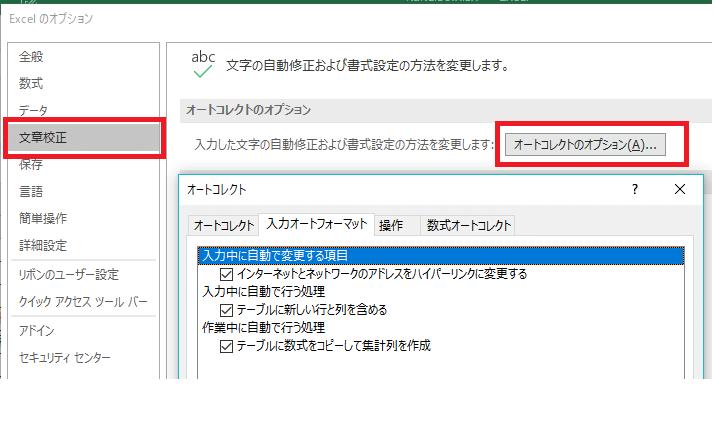 エクセル家計簿・複式簿記・エクセルのオプション・文章校正