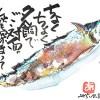 秋刀魚:ちょくちょく夕餉でご対面。