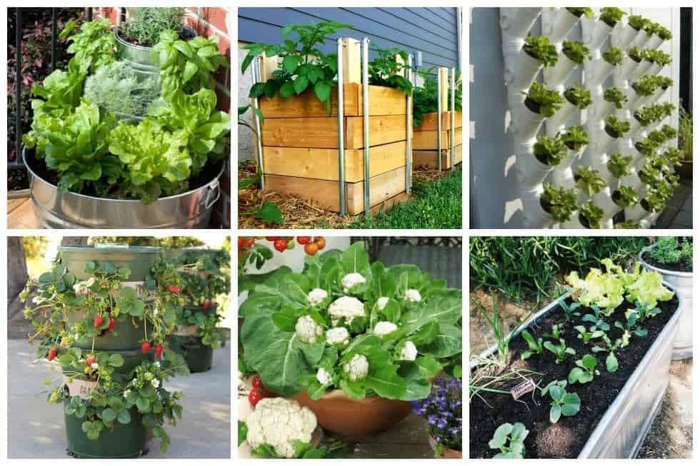 gardening archives ideal me