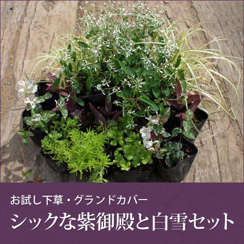 goten-garden02