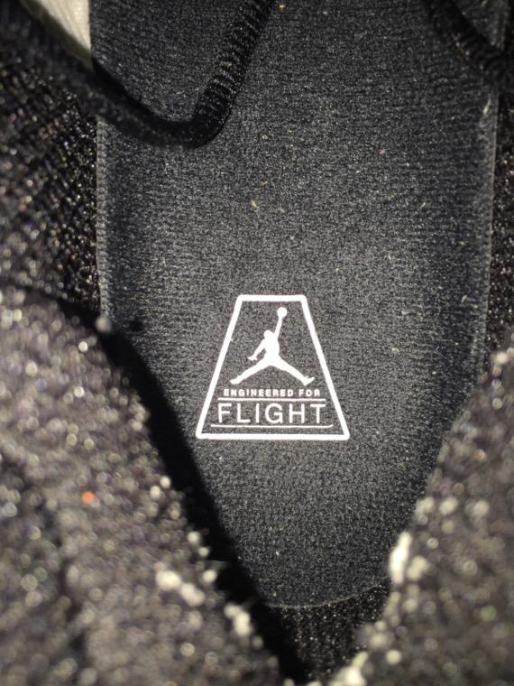 エアジョーダンXX9 フォトリール インソールプリントFLIGHT