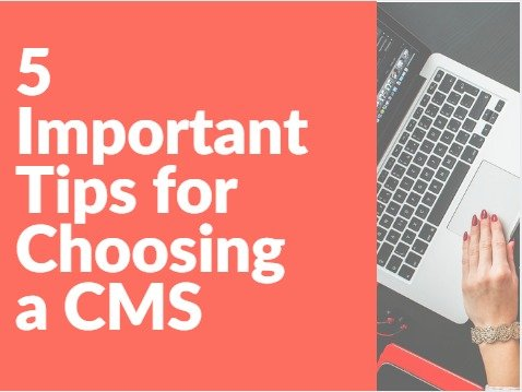 5-important-tips-for-choosing-CMS