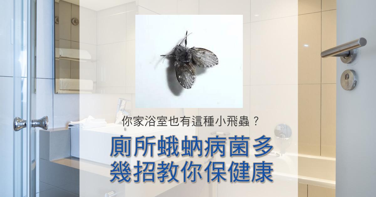 廁所蛾蚋病菌多,幾招教你保健康 | 中西化學│環境用藥專家│中西購物網