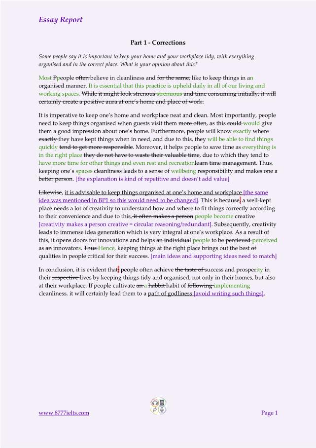 Anirudh Sample Essay Report 1a
