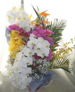御祝いの花束