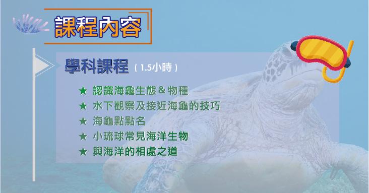 小琉球海龜生態課程 | Suiila水啦海洋休閒俱樂部