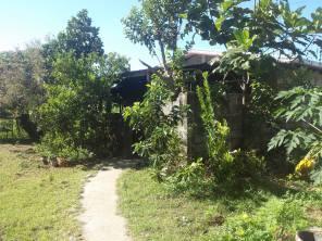warehouse-alcala-pangasinan-wsd1176-rt-26