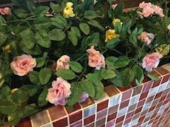 池袋JK制服キャバクラ【はちみつくろーばー】いろ 可愛いお花