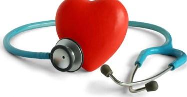 Тест: сердечно-сосудистая система