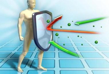 Иммунная система: огонь по своим