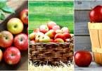 5 оснований употреблять фрукты каждый день