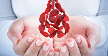 Интересные факты о свёртываемости крови