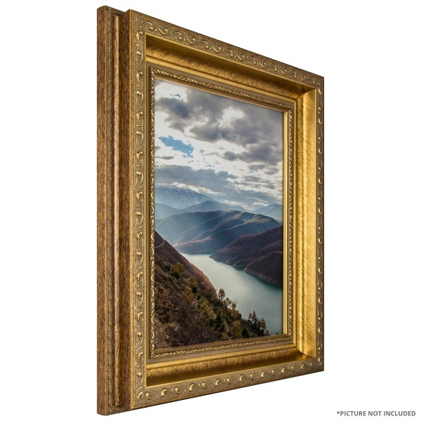 Craig Frames French Ornate Antique Gold Frame