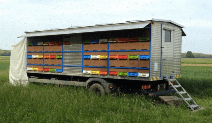 AZ hives on a big truck body