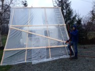 Reinforcing the sheeting with 2x4's after a couple of weeks of repairing ripped out staples.