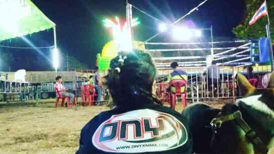 Onyx MMA shirt - Last night at the fights-001