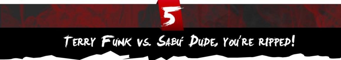 Terry Funk vs. Sabu: Dude, you're ripped!