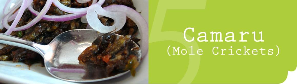Camaru-Mole-Crickets-8 Signature Kapampangan Dishes that You Should (Really) Try