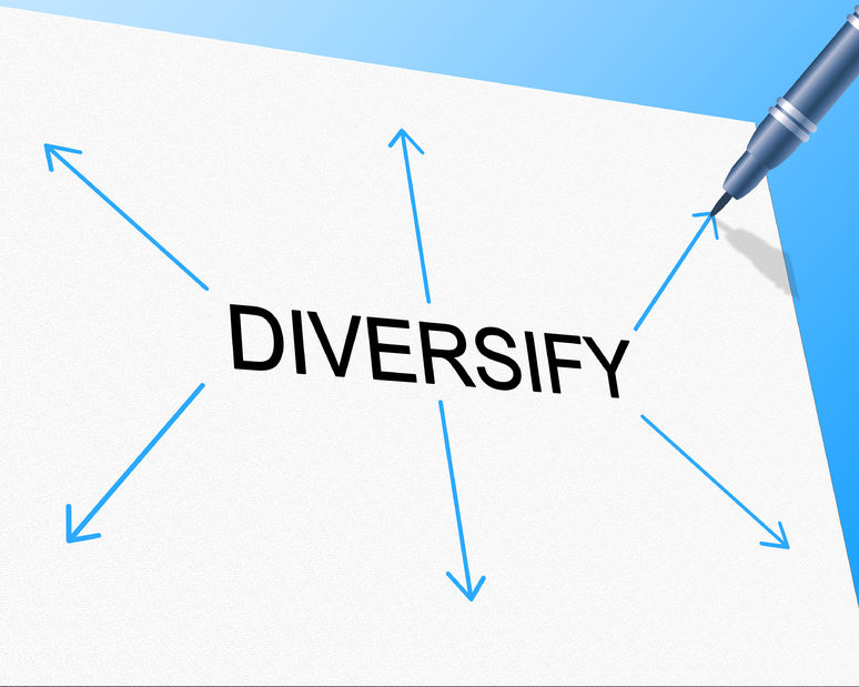 31944999 - diversify diversity meaning mixed bag and different