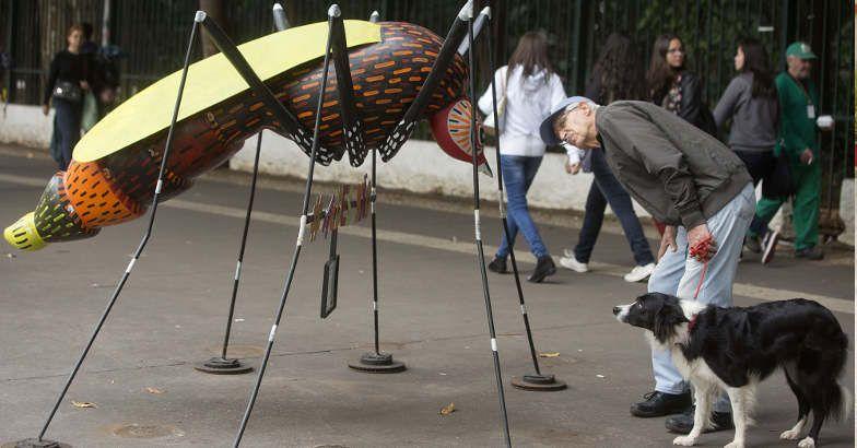 zika-awareness.jpg.image.784.410