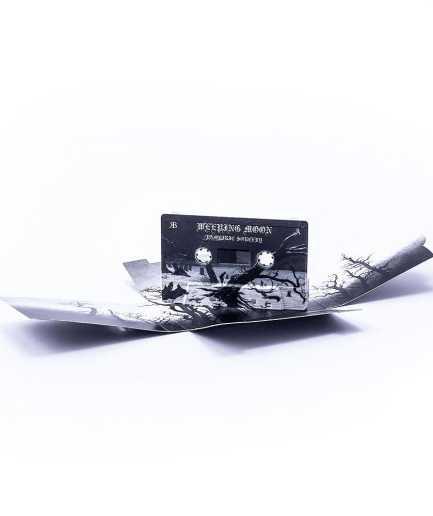 UV Audio Cassette in Printed Slipcase (Brad Pack)