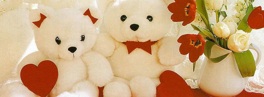 Teddy_Bear_facebook_timelin