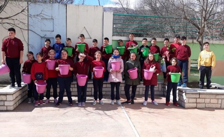 Një frymë jeshile e dashurisë në shkollën tonë