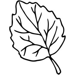 leaf outline elm stamp tap above views