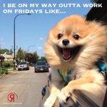 Fridays Outta Work