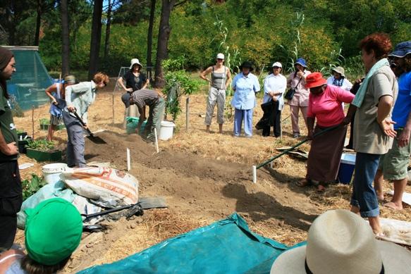 soil-for-life-2009-021