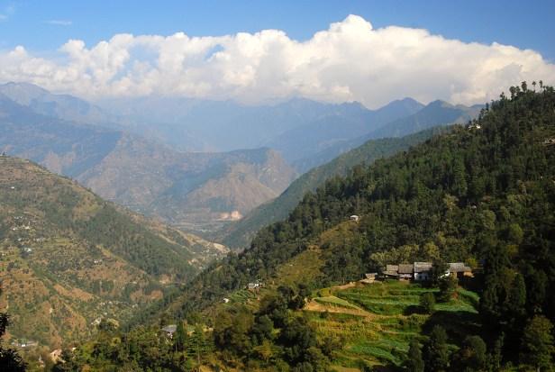 Die grünen Berge zwischen Mandi und Bajaura