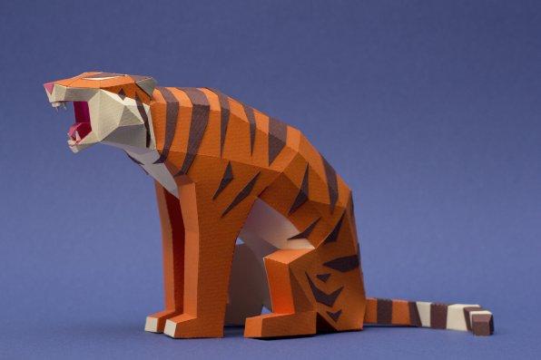 guardabosques-tigre