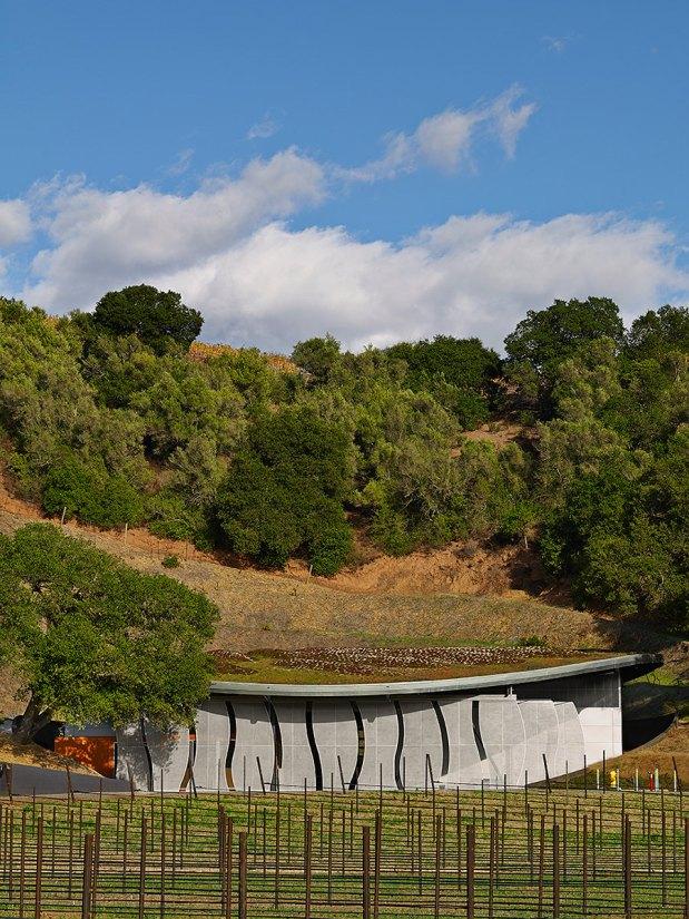 Odette Estate Winery. Foto: Adrián Gregorutti